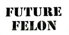 future felon