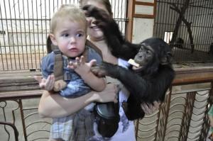 monkey leash