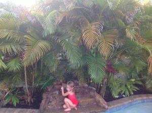 waterfall alma